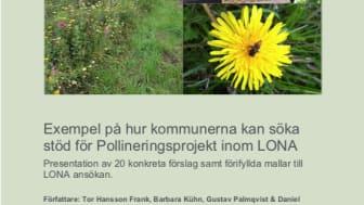 Rapportframsida LONA-projekt pollinering