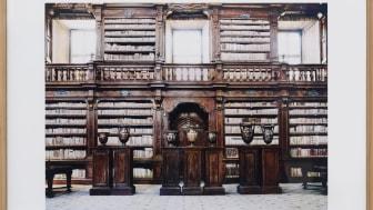 Hofer - Biblioteca del Girolamini Napoli IV - 2009 (HOF00572)