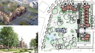 Stor omsorg lagts på mötet mellan de tillkommande bostäderna och den publika parken. Illustrationer: Wingårdh Arkitektkontor