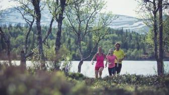 Familjeträningsveckor i Åre i sommar