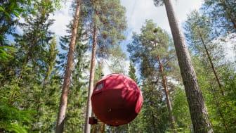 Dalarna_Näsets-Marcusgård_Ingeborg_Lindseth.jpg