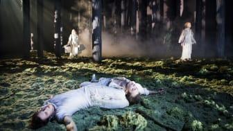PREMIÄR för En midsommarnattsdröm den 10 mars på Helsingborgs stadsteater!
