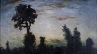 Carl Fredrik Hill - maximus pictor