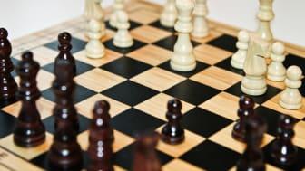 Hökåsenskolan vann skollags- SM i schack
