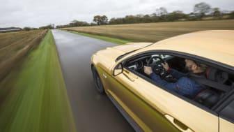 The Golden Mustang