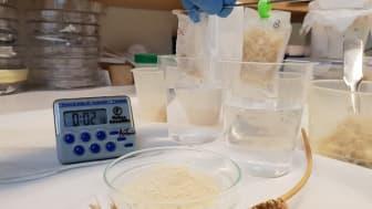 Test av superabsorberande material baserat på vete. Foto: Antonio Capezza