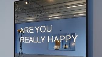 Jeppe Hein, ARE YOU REALLY HAPPY (ÄR DU VERKLIGEN LYCKLIG), 2013