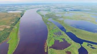Permafrostområden och flodlandskap i västra Sibirien. Foto: Egor Istigechev