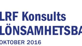 Ökad lönsamhet för småföretagen i Stockholm och norra Norrland