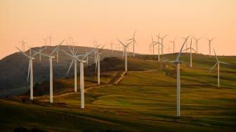 Softhouse expanderar investeringsportföljen ytterligare - investerar i energiteknikföretaget dLab