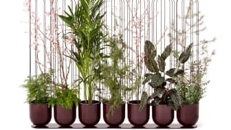 Cacti planteringskärl, design Anki Gneib.