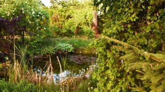 Gartengestaltung: Gartenplanung, Gartenbau, Gartenpflege | © Dein Service GmbH
