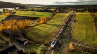 Timmertransport
