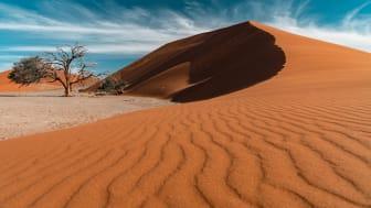 Alphaddicted_Roadtrip Namibia_14