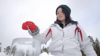 GlobalVote_Sweden_iceballotbox