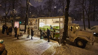 Blomsterfrämjandets mobila växthus sprider glädje i mörkret. Foto: James Johansson
