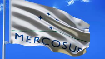 Handelsaftalen med MERCOSUR-landene vil give øget incitament til at rydde og brænde endnu mere skov af for at give plads til et konstant voksende landbrug