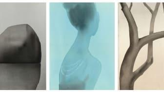 "©Mats Gustafson, ""Rock"", 2003, ""Necklace (Tiffany & Co)"", 2004, ""Tree (Walnut)"", 2002"