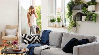 Natur an den eigenen vier Wänden: das Green Wall Home Kit