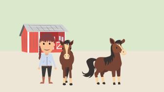 Hästar och andra djur riskerar att fastna vid gränsen