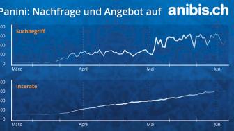 Panini»-Fieberkurve auf dem Höhepunkt - Analyse der meistgesuchten Suchbegriffe auf anibis.ch