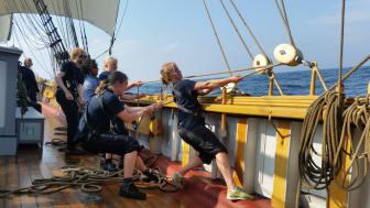 Segling med Tre Kronor af Stockholm, symbol för Briggen Tre Kronor och Hållbara Havs Östersjöarbete. Tre Kronor utsågs 2009 till ett av världens mest välbyggda och välseglande träfartyg. Fotograf: Christina Thimrén Andrews