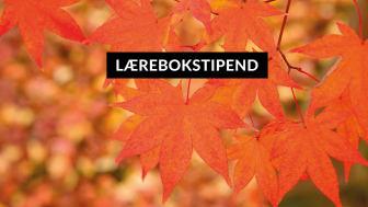 Newsletter_Lærebokstipend-autumn--1080x600.jpg