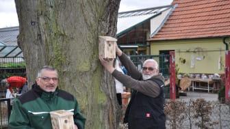 Neues Angebot der Hephata-Gärtnerei: Nistkästen für Vögel, handgefertigt von Hephata-Beschäftigten wie Ralf Schäfer (links) neben dem Leiter der Hephata-Gärtnerei, Klaus Lewinsohn.