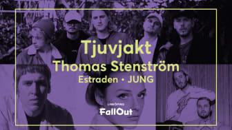 Tjuvjakt till Linköping FallOut