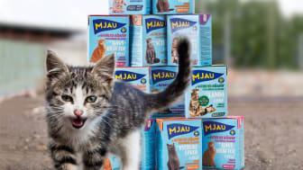 Kattmatstillverkaren Mjau lanserar gåvoshop för utsatta katter