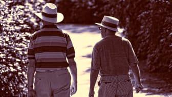 Gentest för Alzheimerrisk; ett första steg mot förebyggande åtgärder.