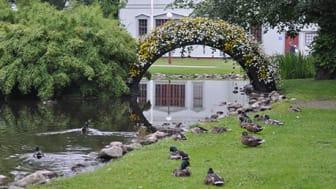 Stadsträdgården i Lidköping nominerad till pris