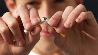 Svensk rökavvänjning kan förbättras