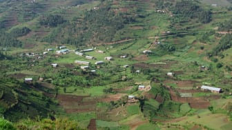 Vy över Virunga-bergen i Uganda. Foto: Achim Prill / Mostphotos