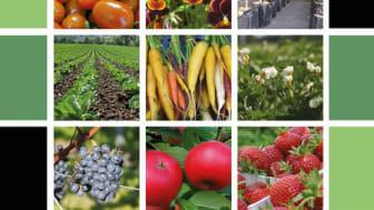 Vässat Tillväxt Trädgård går in i ny verksamhetsperiod