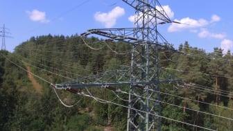 Um das Stromnetz bei Engpässen zu stabilisieren, wurde erstmals bundesweit der gezielte Abruf von dezentralen Anlagen getestet. Im Süden hieß das mehr Einspeisung aus Biogasanlagen.