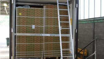 Two pallets of grapes in Sokorai's trailer, concealing the illegal cigarettes behind