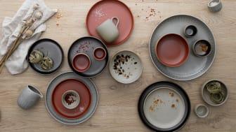Arzberg - Joyn Stoneware: Ash, Iron, Spark