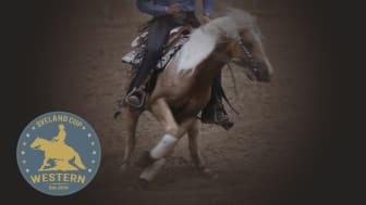 Reining, Trail, Western Horsemanship, Ranch Riding och Showmanship at Halter är grenarna som kommer att avgöras i Sveland Western Cup. Bild: Bengt Ekblom