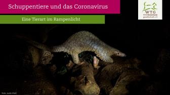 WTG-Dossier: Schuppentiere und das Coronavirus