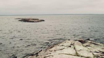 HaV vill skapa regler som ger långsiktigt skydd för värdefulla marina områden