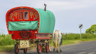Research aims to improve Travellers' health