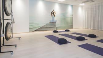Holistics yogasal
