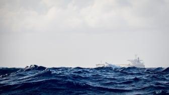 Höj inte farleds- och lotsavgifterna – höj anslagen till Sjöfartsverket
