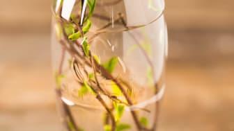 Nästa generations PET-flaska av 100% växter