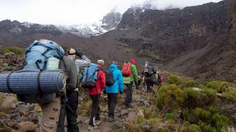 Kilimanjaro- Foto: Shutterstock