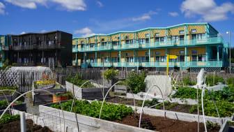 Temporära bostäder på Kvillepiren. Totalt ska 900 bostäder med tidsbegränsat bygglov uppföras i Frihamnen