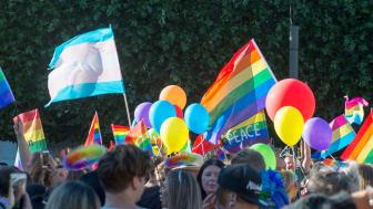 Bild från förra årets Prideparad.