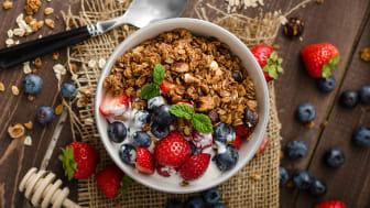 Grillad granola med yoghurt, jordgubbar, blåbär och mynta i vit skål