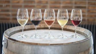 Rött, vitt, orange eller rosa - olika men lika bra! Kom och prova vin i regnbågens alla färger.
